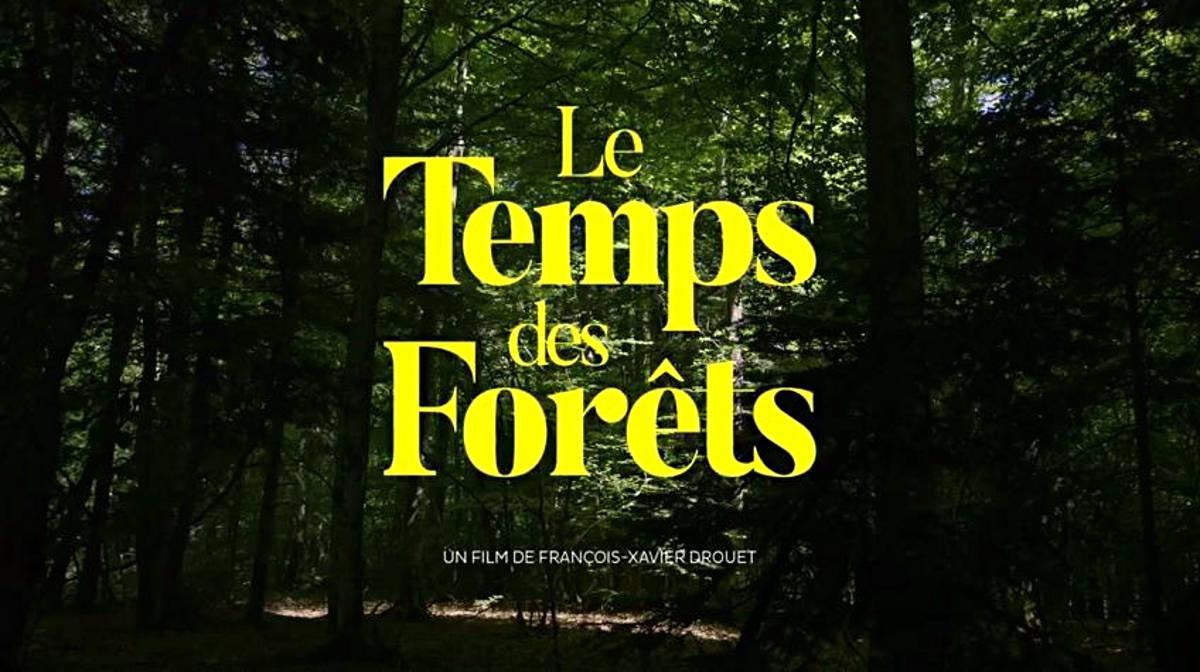 Cinéma : Le temps des forêts
