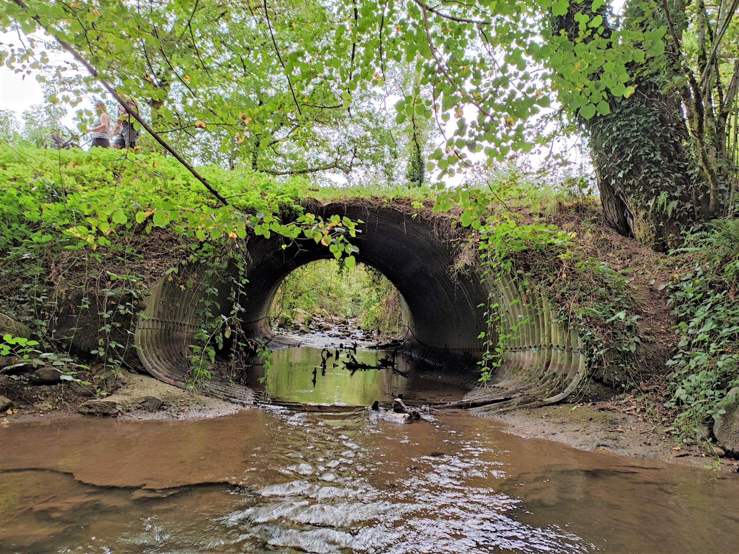 Arifat : réparation du pont route des cascades